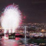 作品「光の競演(Fireworks and Tokyo night)」